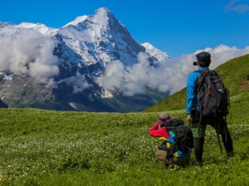 7月初旬、標高2000mハイキングコース
