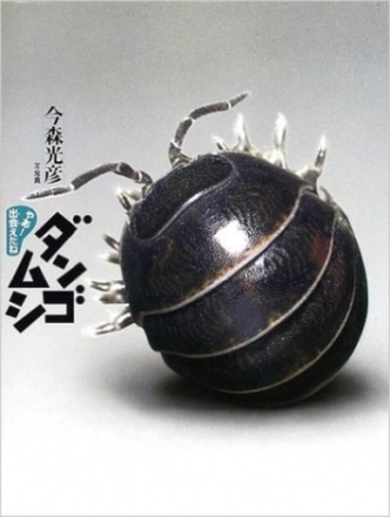 『ダンゴムシ』(やあ!出会えたね)