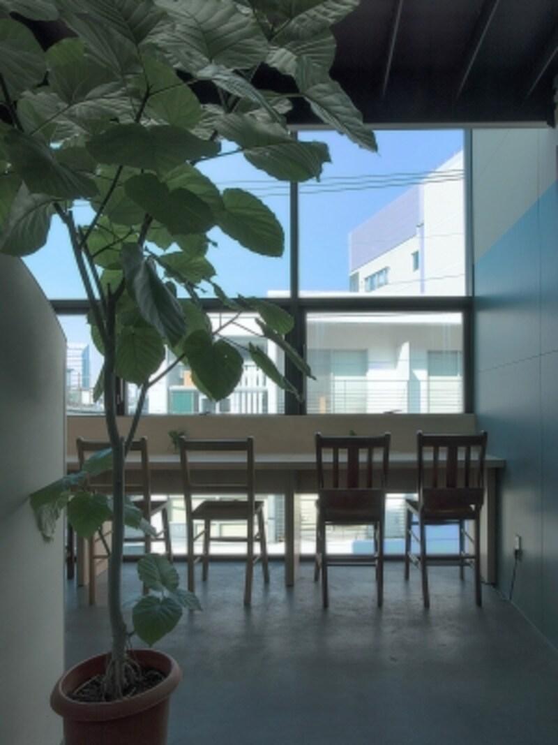 将来的にはらせん階段の上の通路と小部屋も使用してメゾネット式のカフェにする計画もあるとか。