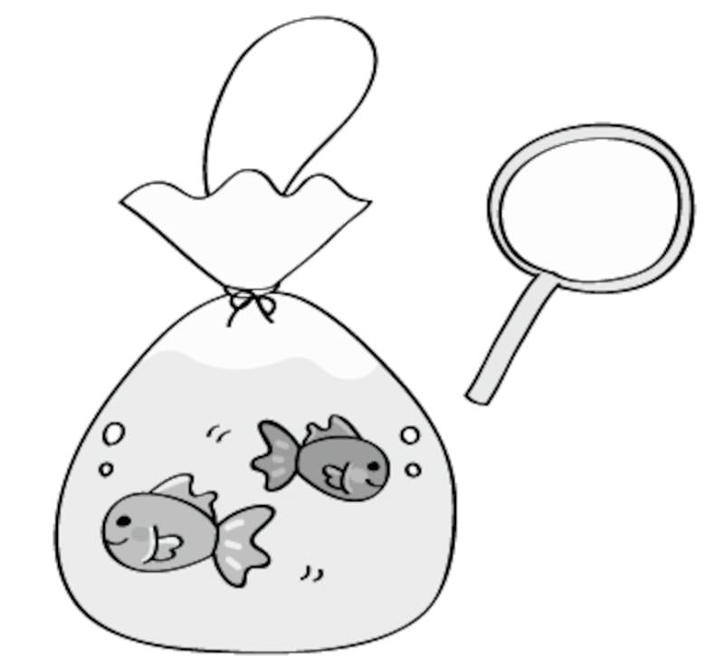 金魚 夏祭り イラスト 白黒 かわいい