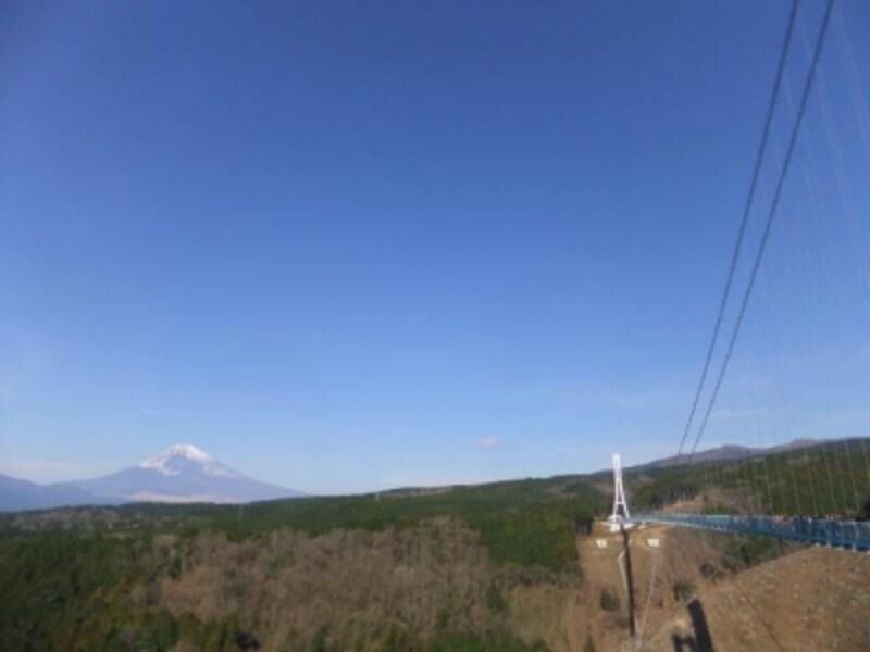 三島スカイウォーク(3)/富士山と共に