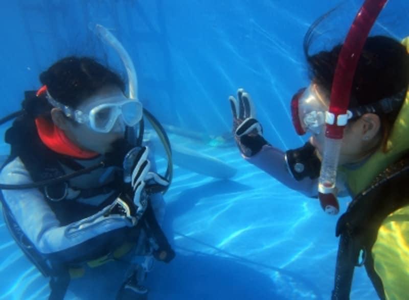 水中では「ハンドシグナル」でコミュニケーション