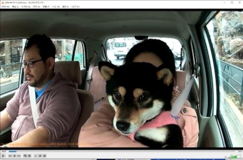 ドライブレコーダーで車内外の様子を常時録画!undefinedスマホで手軽に動画を共有できます