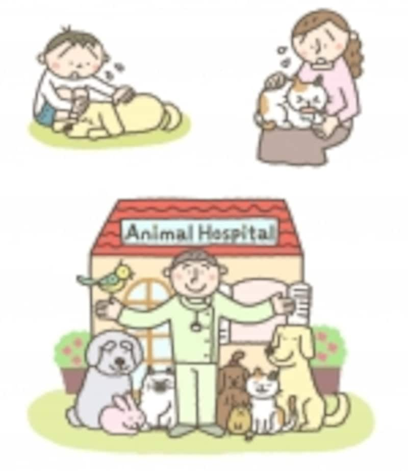 家族同様のペット達、病気やケガにどう備える?