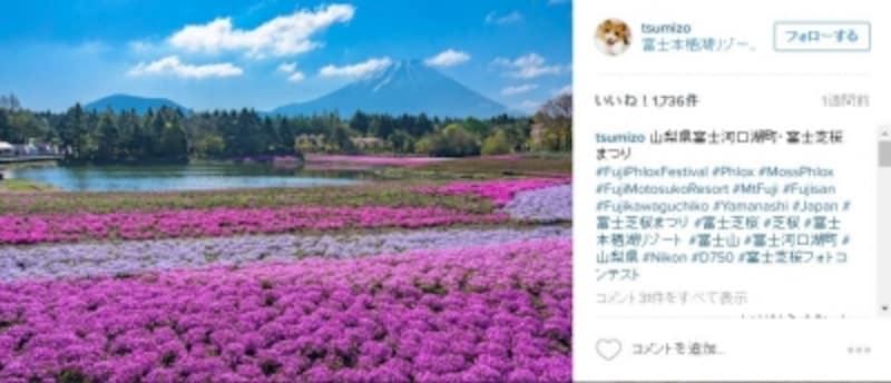 https://www.instagram.com/p/BE0MsXNA_4C/?taken-by=tsumizo