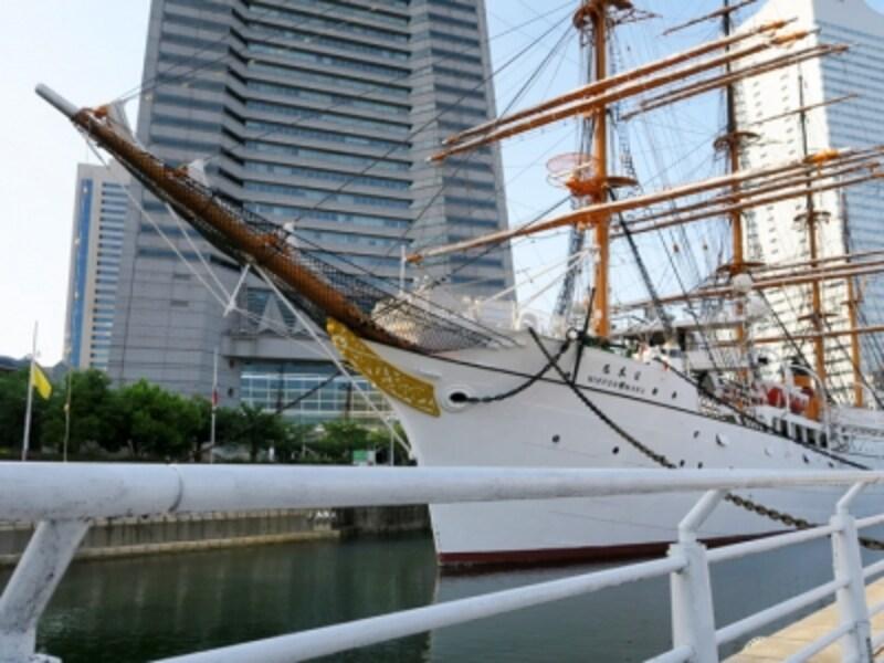 鮫島社長が拾った犬を飼い主に返すのを嫌がった「帆船日本丸」前(2016年5月7日撮影)