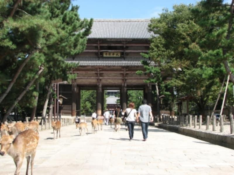 東大寺南大門と鹿たち
