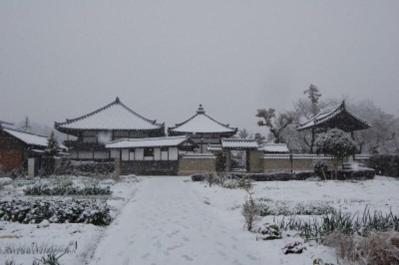 雪に包まれた飛鳥寺。この飛鳥寺が平城遷都に伴い奈良に移転したのが、上述の元興寺である