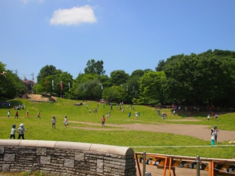 緑がいっぱいの公園だ。広い公園でトイレは3カ所ある。