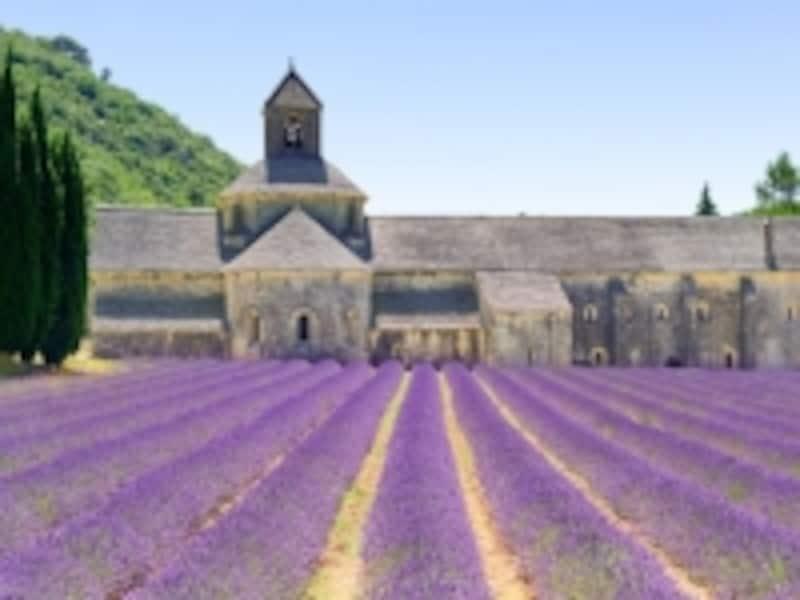 ラベンダーの名所セナンク修道院