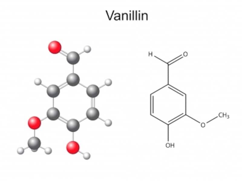 バニリン効果で脂肪燃焼促進