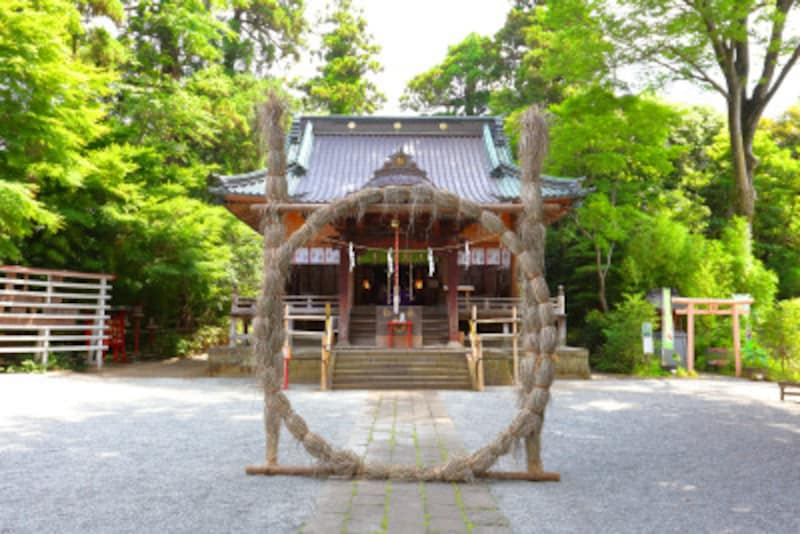 茅の輪くぐり(ちのわくぐり)を夏越の祓(なごしのはらえ)に楽しもう……6月下旬になると神社に茅の輪がたてられる