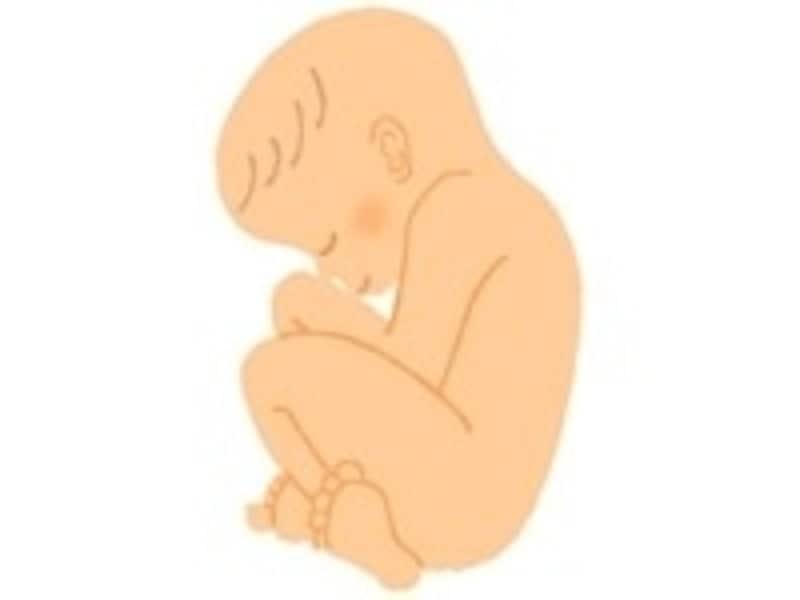妊娠10ヶ月の胎児…妊娠36週・37週・38週・39週・40週