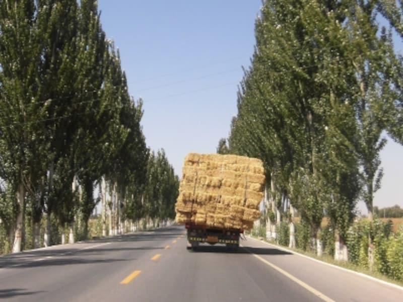こんなのどかな農村風景の中を車は進む