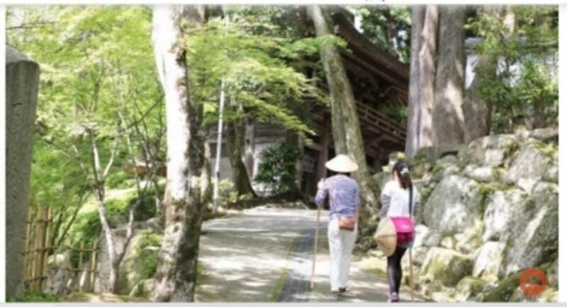今年は香川がスタート地点の「逆打ち遍路」undefined
