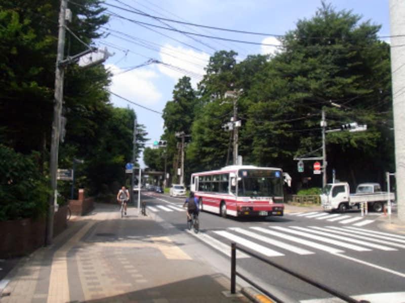 小田急,バス