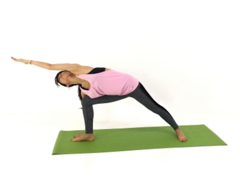 腕と前足で押し合うようにして、太ももをしっかり伸ばします。