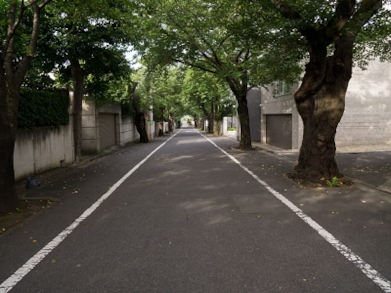 第一種低層住居専用地域の閑静な町並み