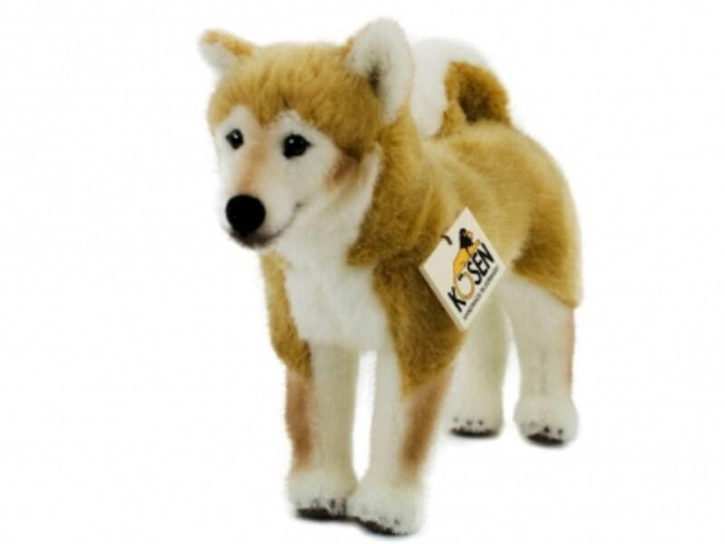 ケーセン/柴犬(12960円)