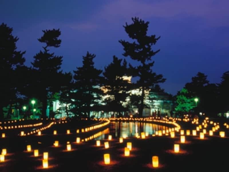 ろうそくが奈良の夏の夜に美しく輝く「燈花会」