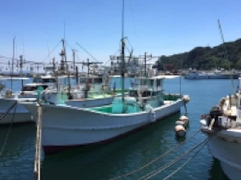 地元漁師のワイルドなグルメ
