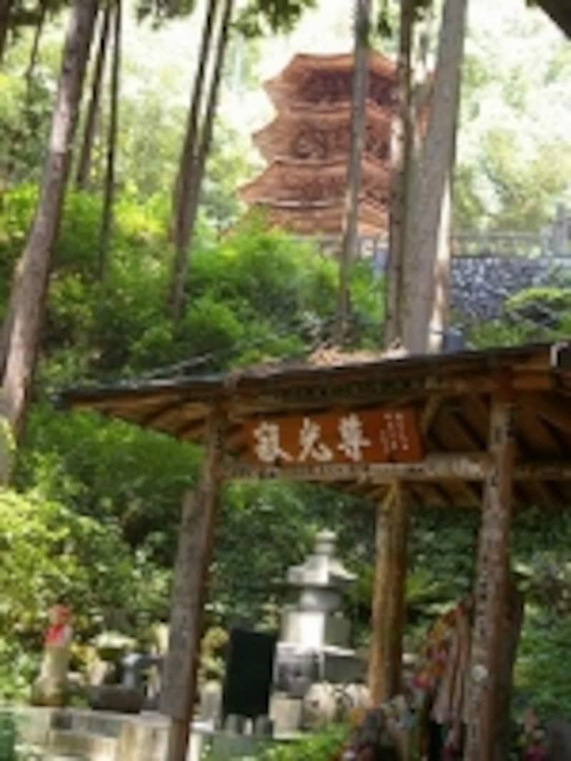 どこから見ても美しい安楽寺の八角塔