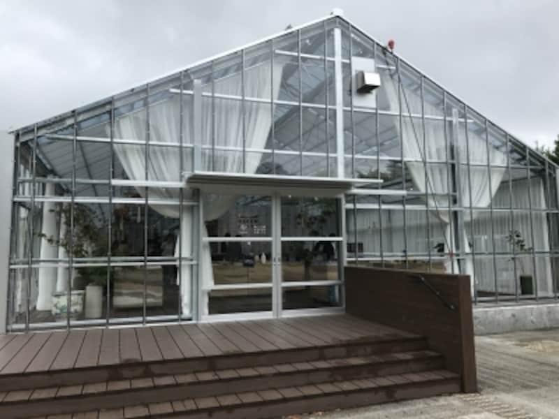 ガラス張りの温室がいきなり登場してインパクト大!