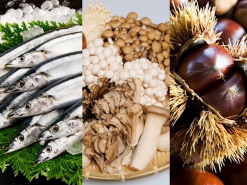 秋の3大食材の栄養素を無駄なく摂取する食べ方とは