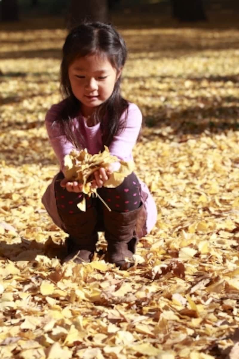 枯葉と少女