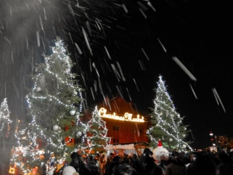 今年は期間中の特定日に「降雪イベント」が開催(2016年11月25日撮影)