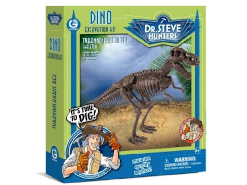 リアルな恐竜の骨格は恐竜好きの子どもには最高の贈り物