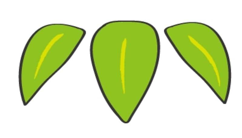 竹の葉のイラストです。