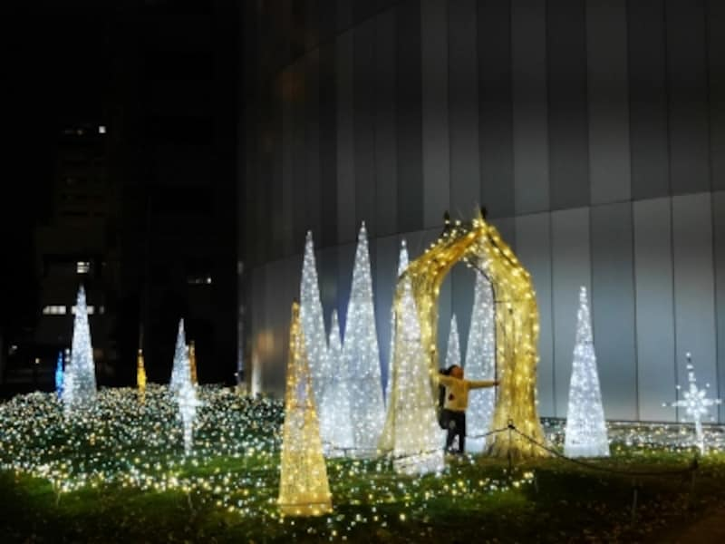 光に包まれて撮影ができるフォトスポット(2016年11月26日撮影)