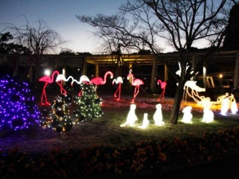 ズーラシアならではのクリスマスイルミネーション(画像提供:ズーラシア)