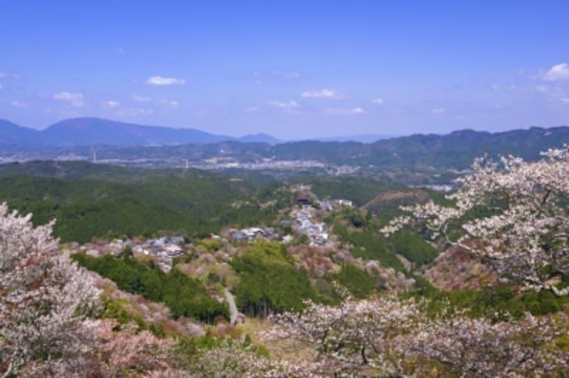 「花矢倉展望台」からは、遠くに、金峯山寺の蔵王堂も見える