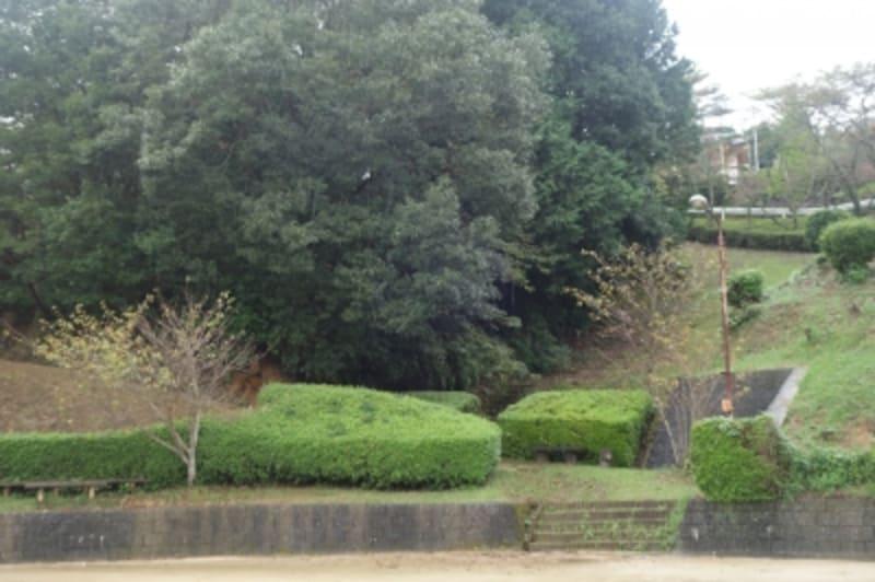 工房のすぐ近くにある、有田最古と言われる窯跡へ。公園になっていた。