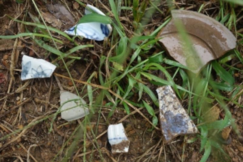 窯跡の周りは今もたくさんの陶片が落ちている。