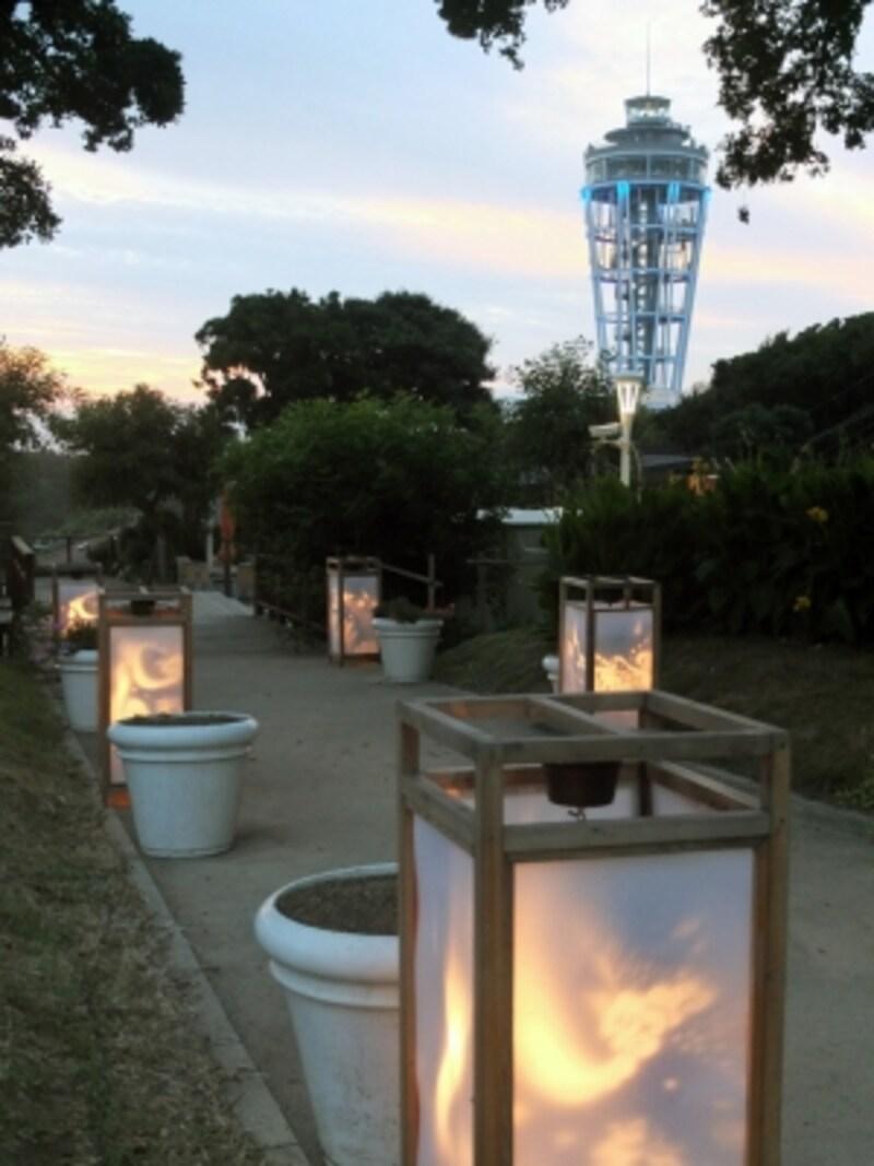 江の島の夏の夜を彩るイベント「江の島灯籠」