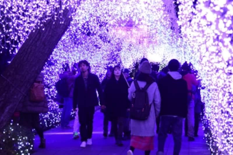 光のトンネル『湘南シャンデリア』