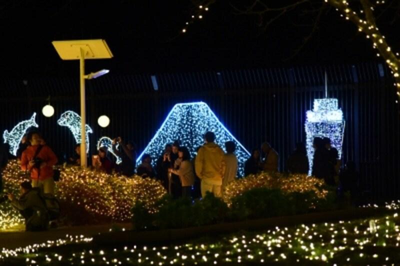 「亀ヶ岡広場」のイルミネーション