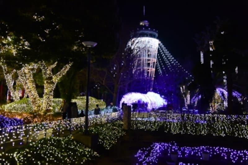 『湘南の宝石』メイン会場である「サムエル・コッキング苑」(2017年12月15日撮影)