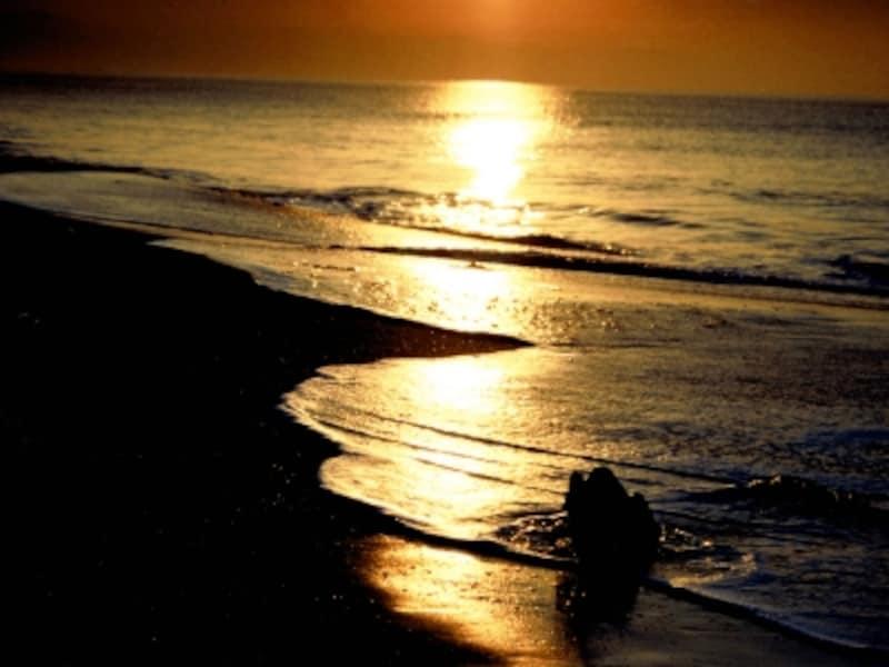 朝日から、海の上に伸びる光の道。日が昇ったら、初詣も楽しみ