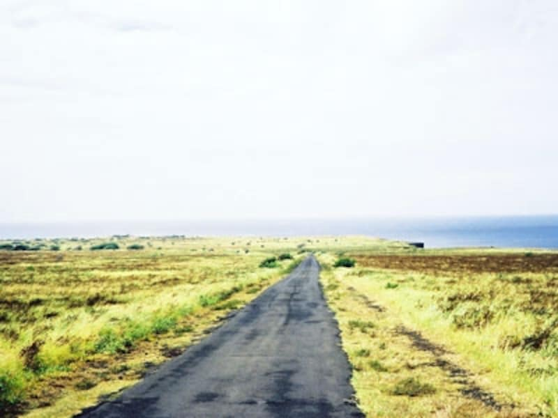 アメリカ最南端サウスポイントへ続くサウスポイント・ロードは、レンタカー会社が走行禁止にしている保険適用外の道路