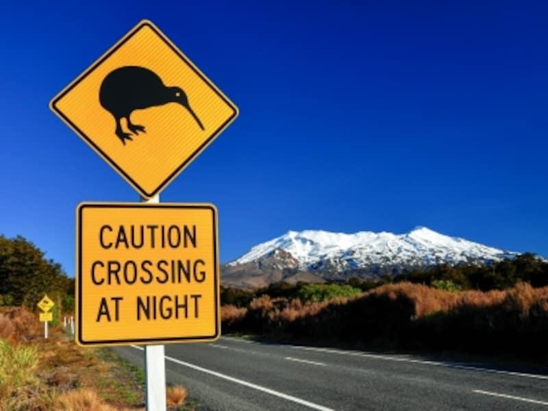 ニュージーランドのオプショナルツアーベルトラ