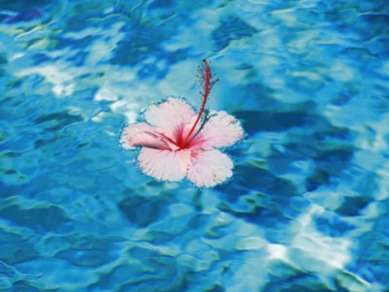 水のような透明感のあるブルーは、「水」の気を強めます。