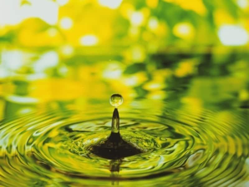 鮮やかなイエローグリーンは、出会い運を引き寄せます。