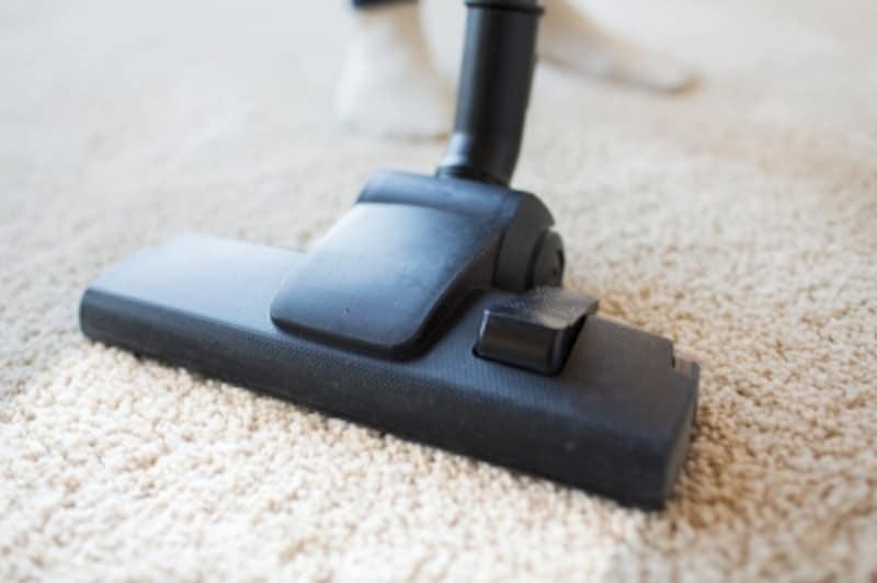 敷物があると快適な一方、ゴミやほこりが絡んで掃除が大変、掃除が行き届かないとアレルギーを引き起こしやすいといったデメリットも