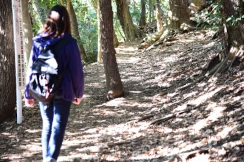 自然豊かなハイキングコースを歩いて