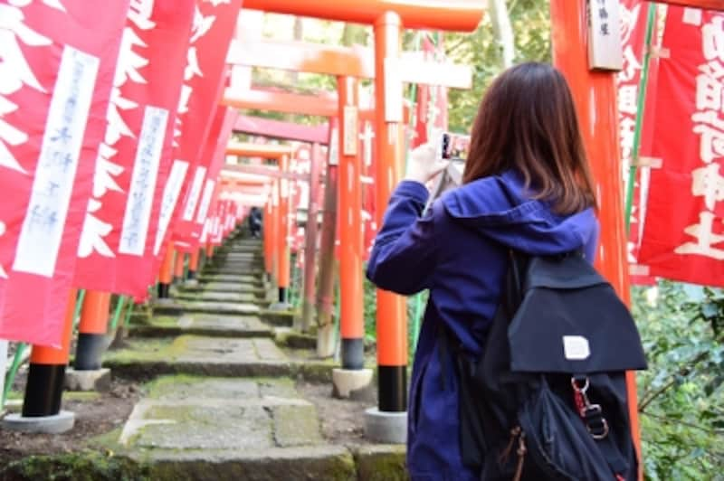 佐助稲荷神社参道の鳥居をスマホで撮影!