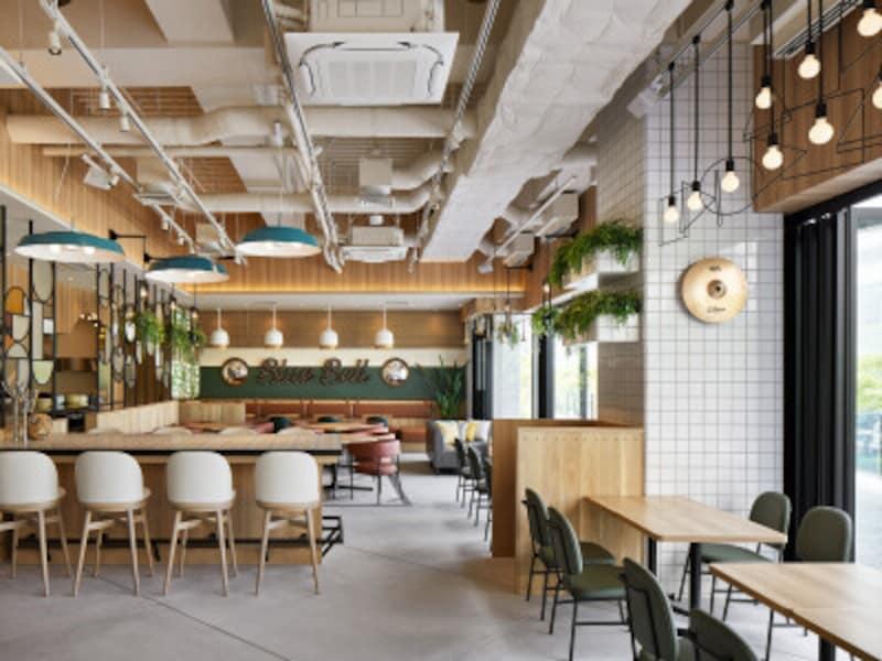 テラス席もあり、開放感あふれる店内(画像提供:オールディカフェ&ダイニングブルーベル)